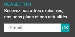 inscription a la newsletter ON EN FAIT DES TONNES